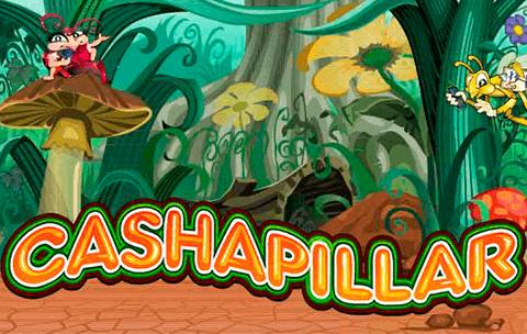 Cashapillar Online Slot Game Review