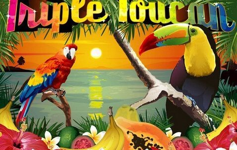Triple Toucan Online Video Slots Game Review